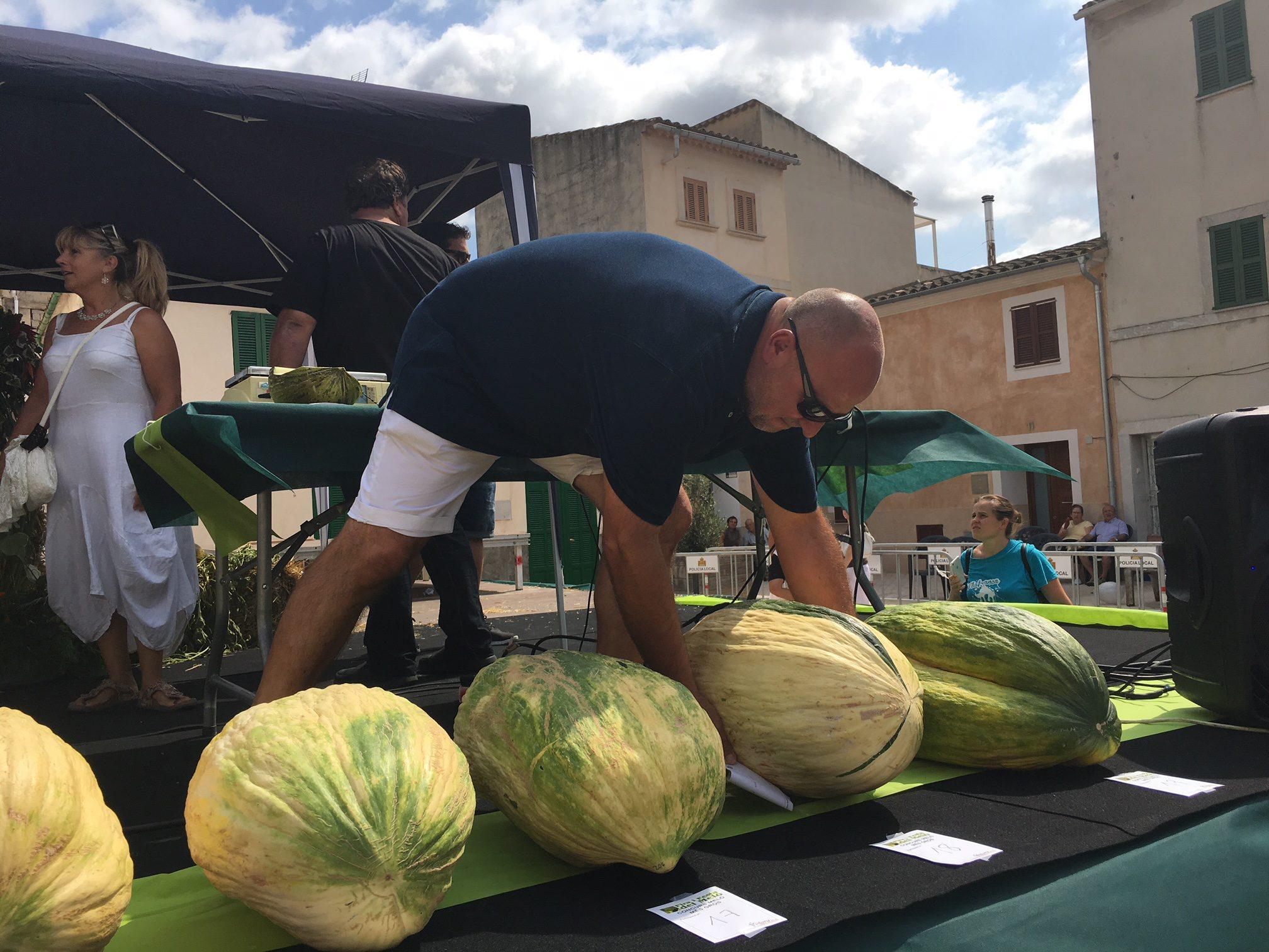 VILAFRANCA. AGRICULTURA. Miquel Morla, Ganador del concurso de Melo gros.