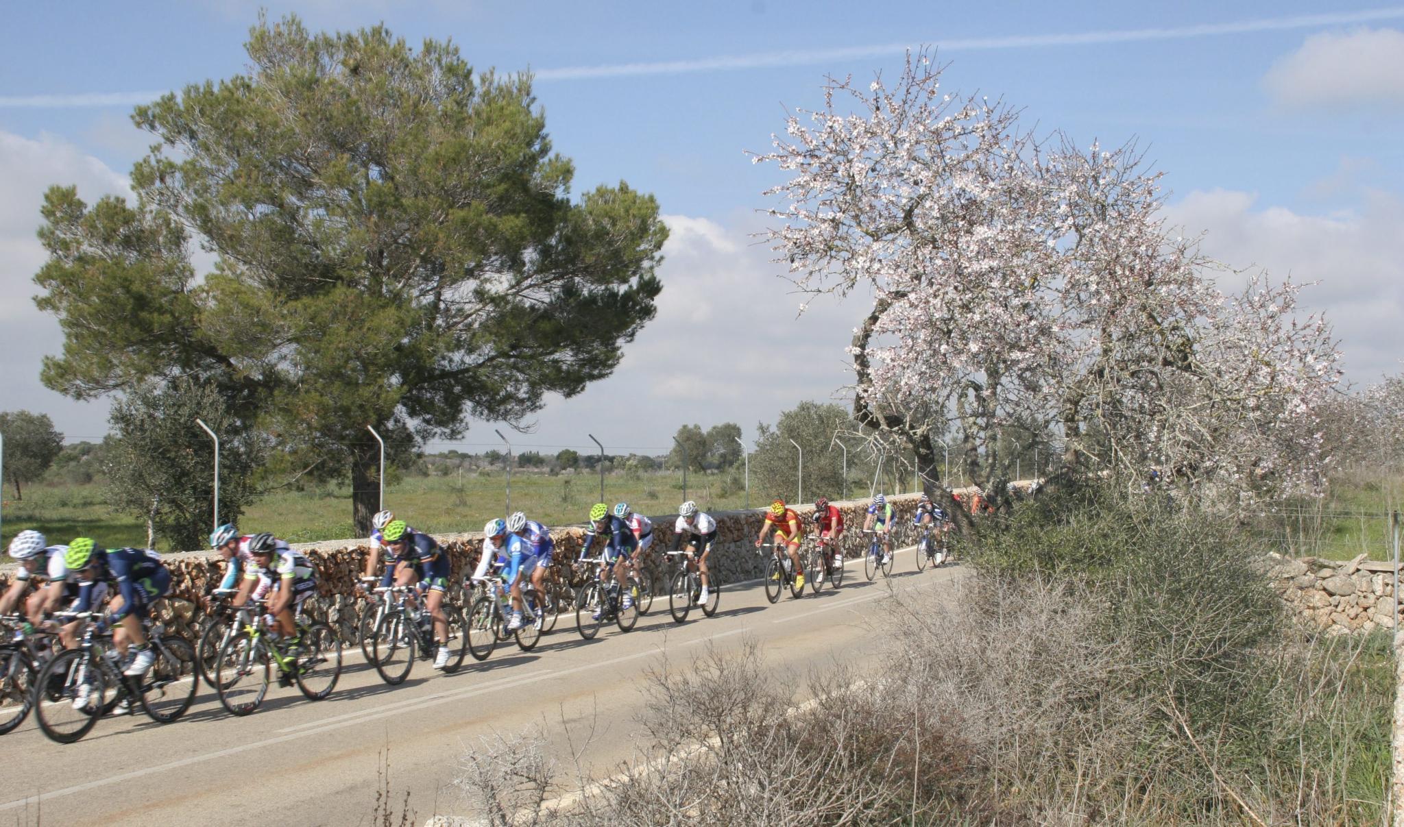 Desafío Vuetla Ciclista a Mallorca evento