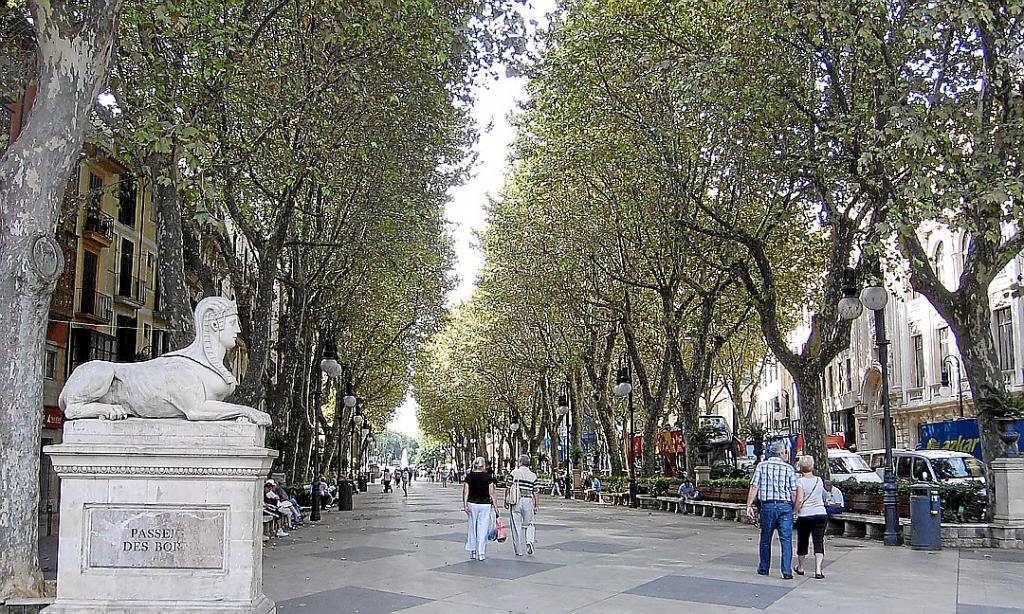 Availability of shops on Palma's main streets is up by two-thirds