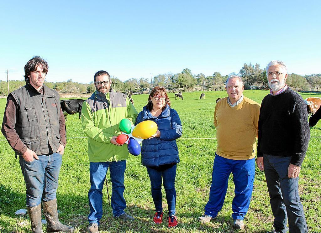 Tourist tax revenue for farming landscape balearics for Can roca manacor