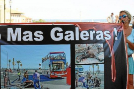 Animal rights group demanding an end to Palma horse carriages