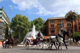 Palma horse carriages will not operate during heatwaves