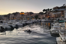 the quiet Puerto Soller in these unique times