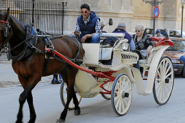 Town hall toughening up control of Palma's horse carriages