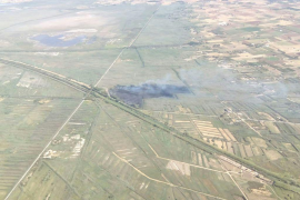Seven hectares affected in Albufera fire