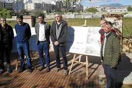 The urban forest of Palma moves a step closer